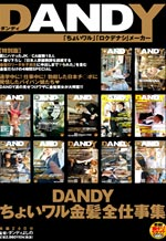 Dandy Working Ladies Collection
