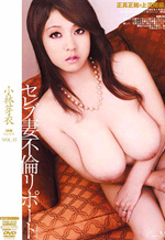 Busty Japanese Lady Hardcore AV Report