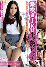 Japanese Bitch Hardcore Wet Pussy