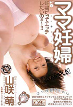 Japanese Pregnant Ladies Porn Movies