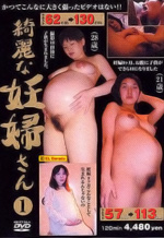 Asian Pregnant Sex in Japan
