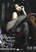 Submissive Venus In Stockings